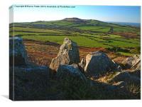 Pembrokeshire Pastoral #3, Canvas Print