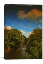 The Eastern Cleddau, Canvas Print