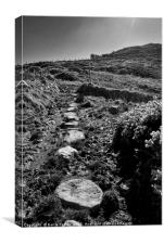 The Wales Coast Path at Carnfathach, Canvas Print