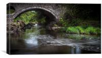Cenarth bridge, Canvas Print