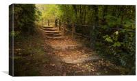 Autumn steps, Canvas Print
