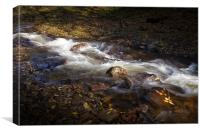 The Neath river, Canvas Print