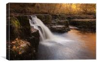 The Afon Nedd, Canvas Print