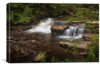 Taf Fechan Forest waterfall, Canvas Print