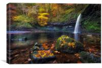 Autumn leaves at Sgwd Gwladus, Canvas Print