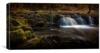 Afon Pyrddin waterfall Pontneddfechan, Canvas Print