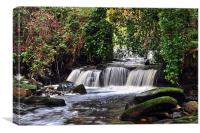 Garell Glen,Kilsyth, Scotland, Canvas Print