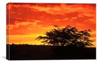 Welsh Sunset, Canvas Print