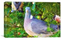 Common Wood Pigeon artistically done, Canvas Print
