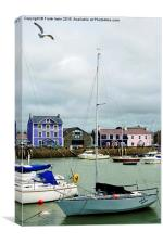 Aberaeron harbour, Canvas Print