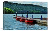 Windermere, motor boats for hire