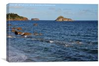 The view from Meadfoot beach, Torquay, Canvas Print