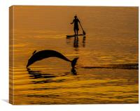 Dave - North Devons Friendly Dolphin, Canvas Print