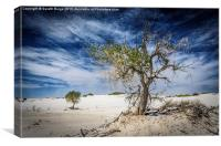 White Sands National Monument #1, Canvas Print