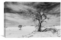 White Sands National Monument #1, mono(light), Canvas Print