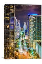 Night Colours of Miami, Canvas Print