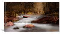 Autumn Stream, Arizona, Canvas Print