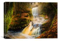 Falls in the Fall, Canvas Print