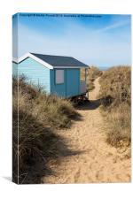 The Path to the Beach, Canvas Print