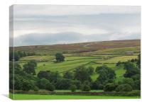 The Dales of yorkshire, Canvas Print