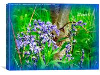 Iconic Bluebells, Canvas Print
