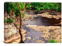 Above Corra Linn, Canvas Print