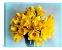 Mini Daffodil Delight, Canvas Print