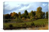 Autumn at the Clyde Valley , Canvas Print
