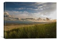 Crymlyn Burrows Beach, Canvas Print