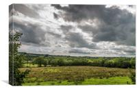 Cloudy Field, Canvas Print