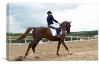 Horse riding, Canvas Print