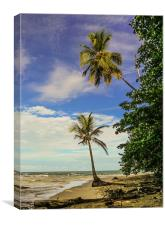 Palm Tree Paradise, Canvas Print