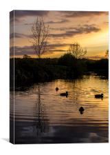 Evening on the water, Canvas Print