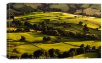 Green, green hills., Canvas Print