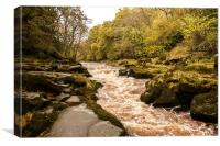 The Strid on the River Wharfe, Canvas Print