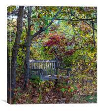 Arboretum bench, Canvas Print