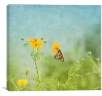 In The Garden - Monarch Butterfly, Canvas Print