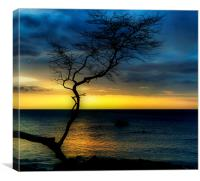 Peaceful Hawaii, Canvas Print