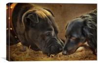 Going Nose to Nose, Canvas Print