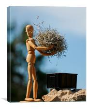 Woody Mannequin Cleans Up, Canvas Print