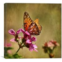 winged beauty, Canvas Print
