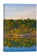 Wooded island at dawn Swedish coast Stockholm Arch, Canvas Print
