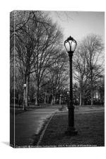 Central Park Streetlamps in black and white, Canvas Print