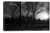 Central Park Sunset Noir I, Canvas Print