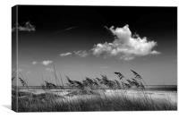 Beach Scene, Canvas Print
