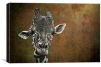 Grungy Giraffe 5654 brown, Canvas Print