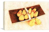 still life with yellow pears, Canvas Print