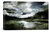 lake in the forest, Canvas Print