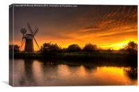 Turf Fen Sunset, Canvas Print