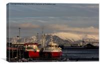 Reykjavik Harbour, Canvas Print